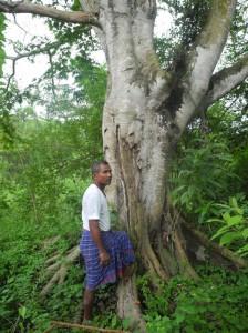 01_Jadav-Payeng-im-Molai-Sanctuary-772x1030